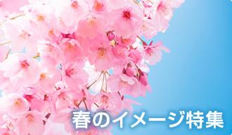春のイメージ特集[food images]